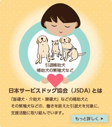 盲導犬・介助犬・聴導犬などの補助犬とその繁殖犬などの、働きを終えた引退犬を対象に、支援活動に取り組んでいます。